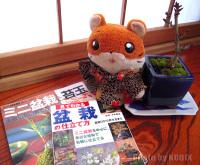 20081223_book_01